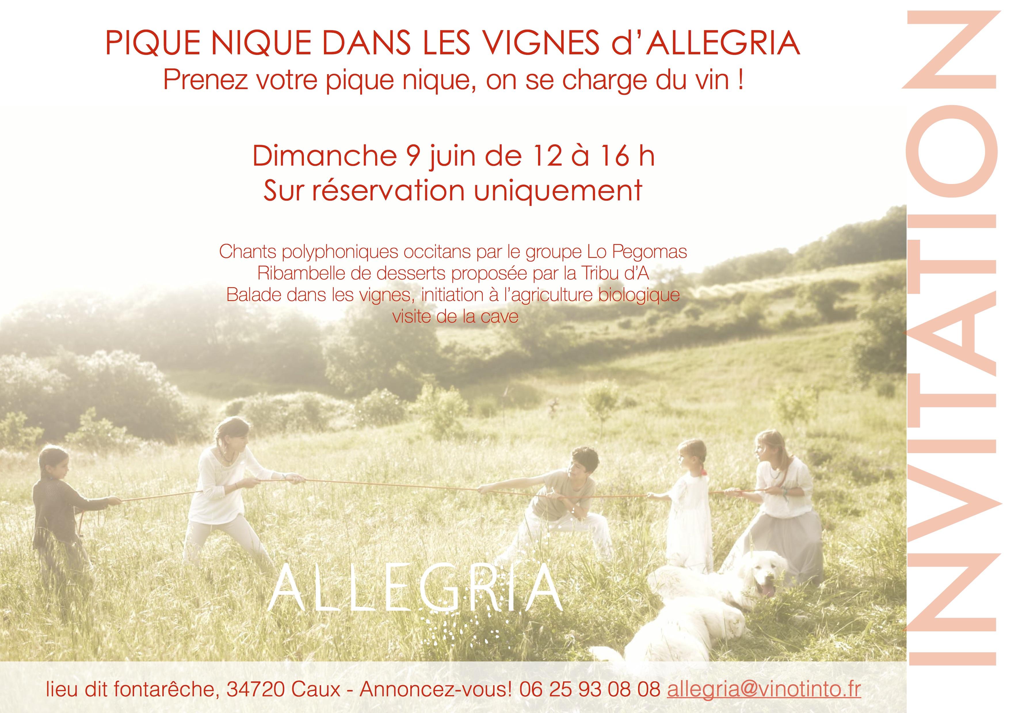 Pique-nique dans les vignes d'Allegria , c'est DEMAIN!!